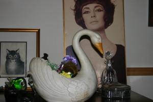 swan3